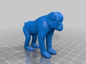 猿(Monkey)3Dデータ