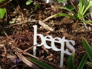 Vegetable garden signs