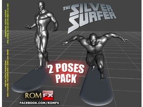 (ART WORK) Silver Surfer Action Figure