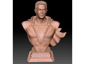 Shazam bust