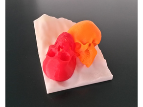 Cheerful Skulls (multimaterial)