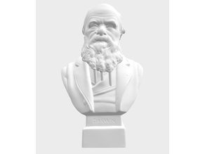 Charles Darwin Bust, c. 1899 (Supports Included) - Remix