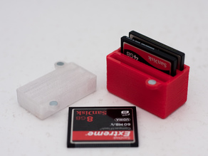 Compact Flash Card Storage