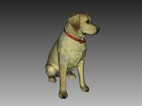 Labrador Sculpture (Dog Statue Color 3D Scan)