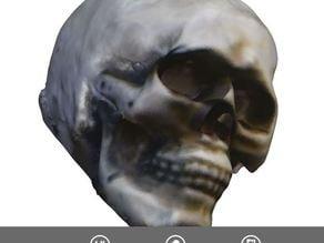 Sense Scan:  Halloween Skull
