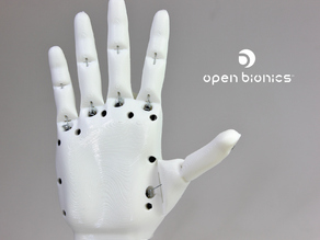 Ada Robotic Hand