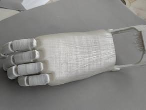 Flexy hand remix