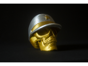 Skull with military cap