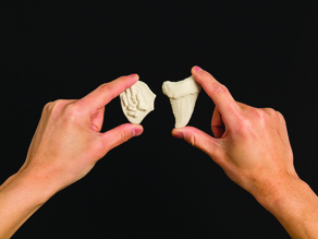 Project: Making Fossils with Sculptris