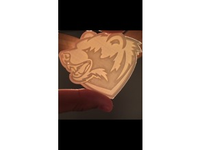 WashU Bears
