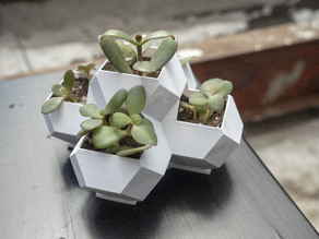 Geometric Planter with Integrated Drainage
