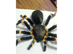 HAIRY tarantula (fridge magnet)