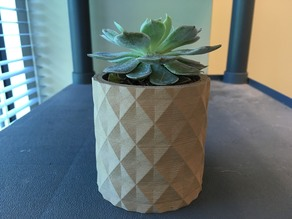 Small Desk Planter
