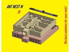 Ant Nest / Formicarium M V1