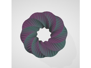 Toroidal Shape