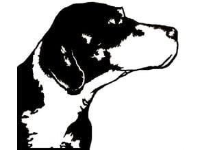 Daniel - German Shorthaired Pointer Hunting Dog