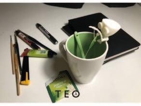 Teo(a)
