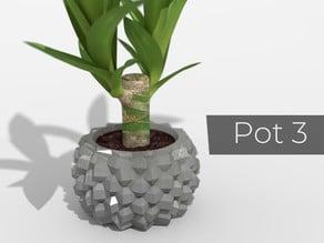 Pot_3