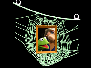 pictureframe spiderweb ...with wall mount