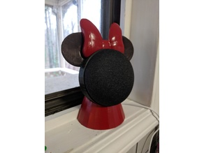 Google Home Minnie