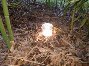 Light Cup Holder