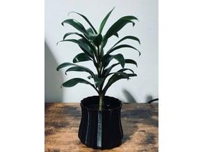 Plant Pot Cover 1