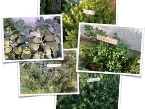 Herb Signs