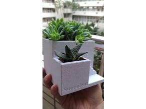 cement like succulent pot by orangeteacher