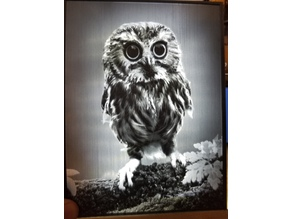 Owl Lithophane