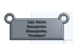 Lyin' Trump Hanging Sign