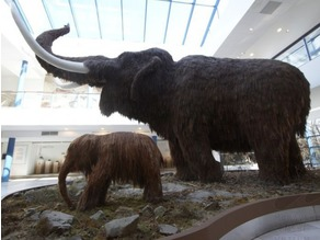 Mammoth With Baby