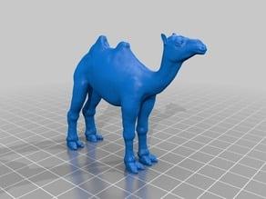 ラクダ(Camel)3Dデータ