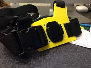 gopro chesty plate mount