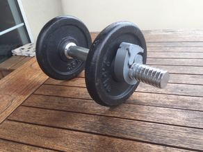 dumbell clamp