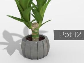Pot_12