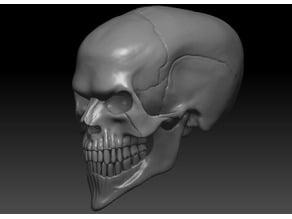 Evil Skull 3D Print Concept