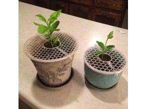 Plant Pot Lid
