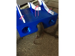 Mice trap - 1 and 3 holes