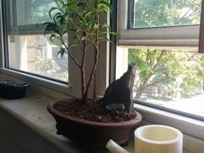 Bonsai Watering Can