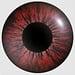 Kandao Qoocam 8k replacement lens ring
