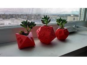 Dice Succulent Planters