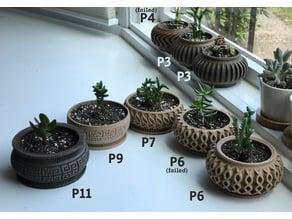 Succulent Planter 11