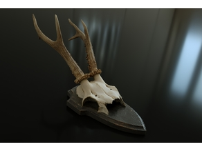 Chamois skull and antler on wood