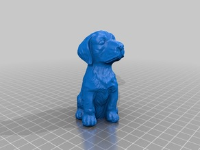 Sitting Dog - 3D Scan