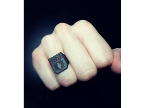 SD-Card Ring