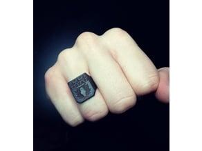 SD-Card Ring