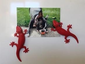 Gecko Fridge Magnet