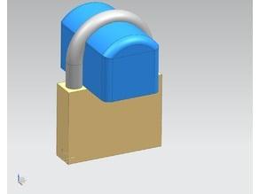Padlock MicroSafe