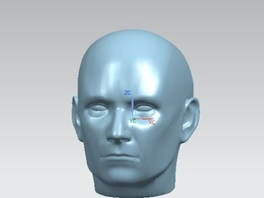 Human Head (NURBS)