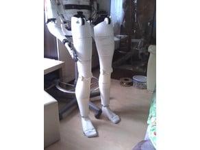 Damian legs (InMoov)